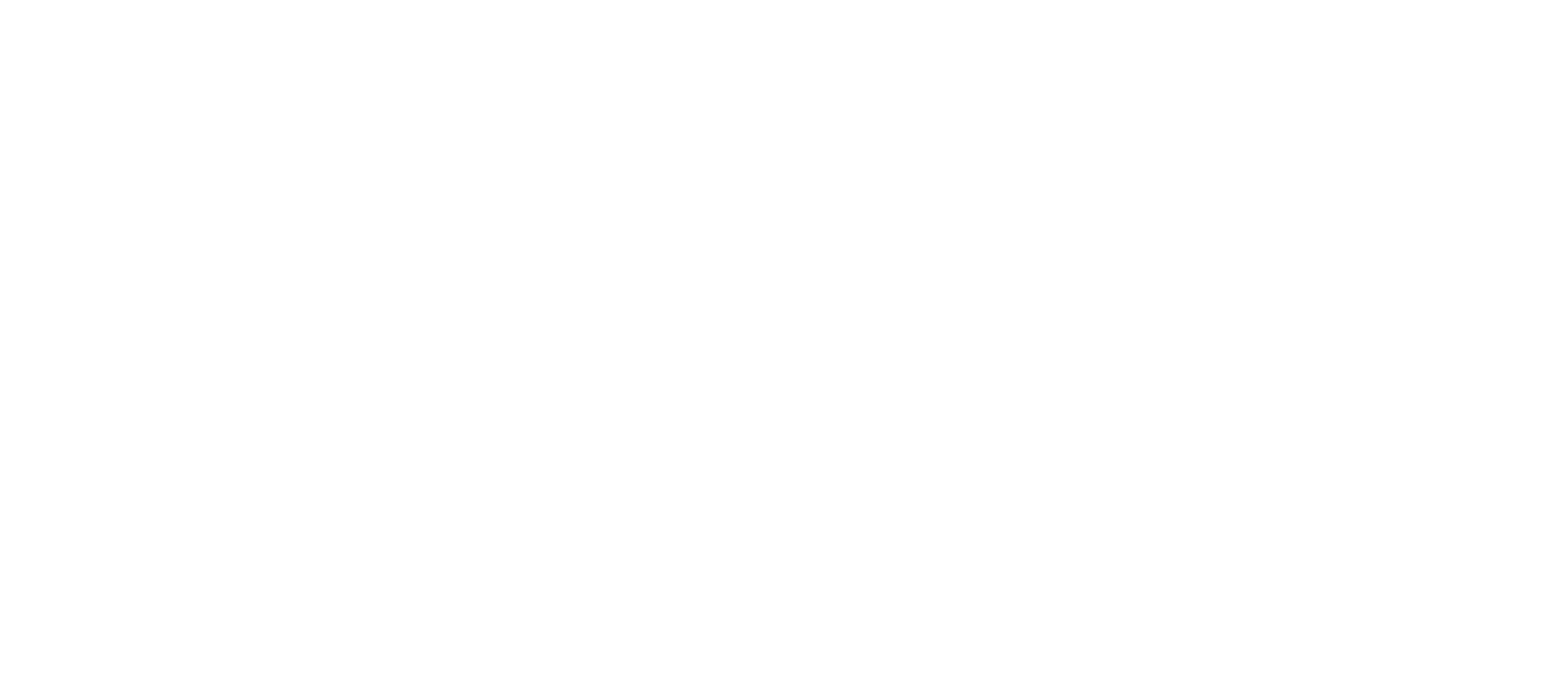 Learn Insight Platforms Logo - White